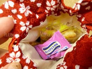 おまけの巾着袋は自分では買わない赤をチョイスしました。華やかでいいかも。
