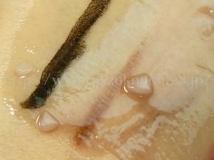 固形のクレンジングはくるくる肌になじませていくうちにオイル化します。オイル化する前のバーム状のクレンジングをアップで紹介。