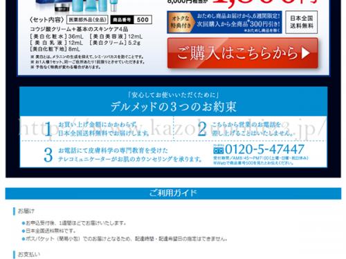 Drmedデルメッド美白お試しセットの購入画面には3つのお約束というのが明記されています。