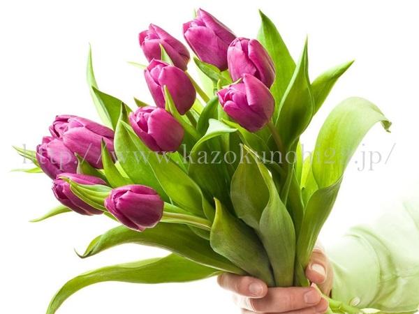 サプライズなので、花や植木のプレゼントにしようかしら。