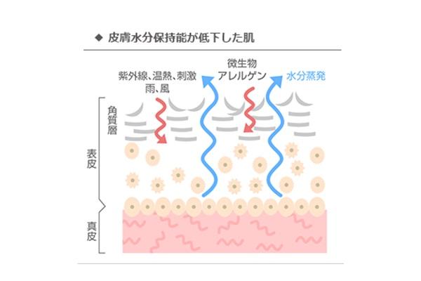 ライスパワーエキスno11配合のスキンケアを使っていない場合の肌状態。