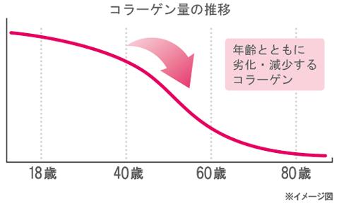 表皮の下にある『真皮』の中では、コラーゲンの割合は70%にも及びます。