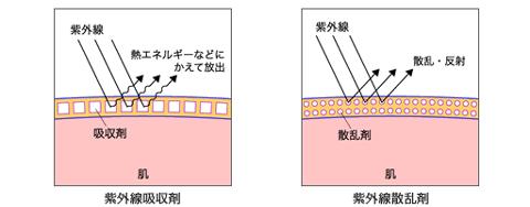 紫外線吸収剤と紫外線散乱剤って何?