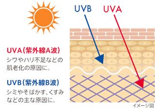 紫外線対策は一年を通して行う
