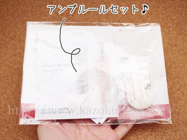 ブルームボックス2019年1月到着分に入っていたアンプルール洗顔石鹸のセット。